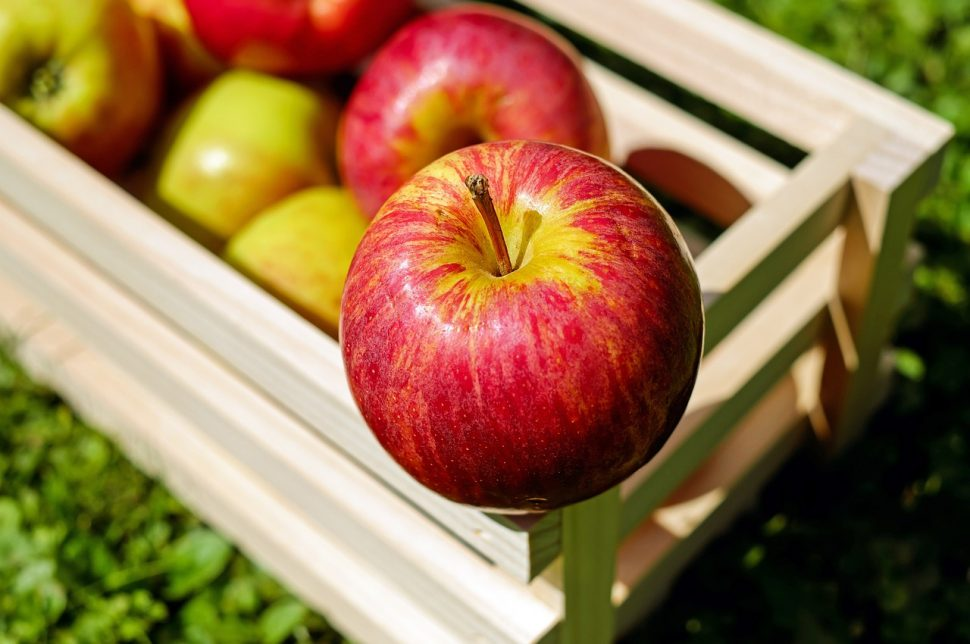 apple-1589869_1280